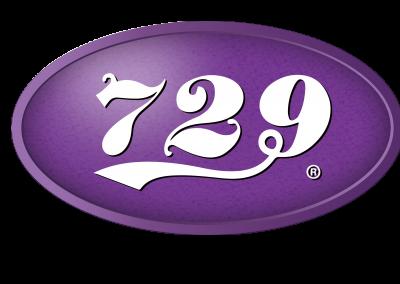 729 logo